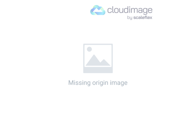 Google Panda Algorithm Update Explained