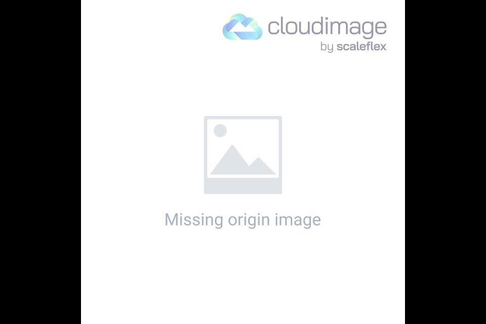 Google Panda Algorithm Update Explained